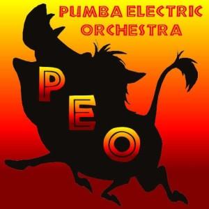 Pumba Electric Orchestra - La Compagnia del Villaggio