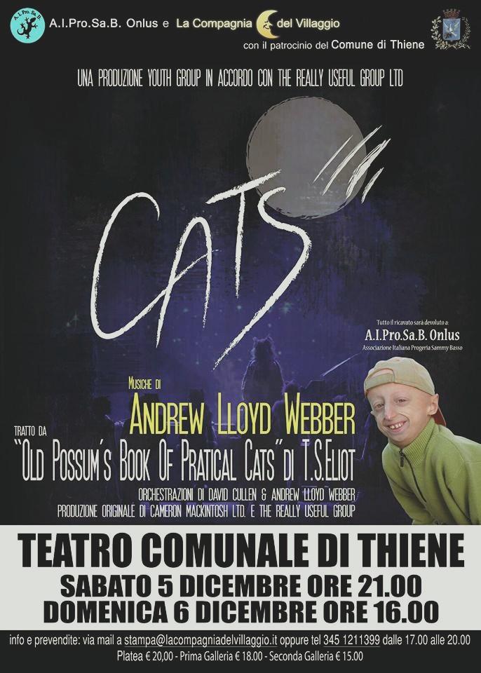 Spettacolo Cats - Thiene Dicembre 2015 - La Compagania del villaggio